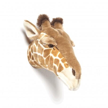 troph e peluche girafe bibib. Black Bedroom Furniture Sets. Home Design Ideas